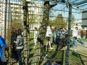 Nicht nur die Spieler, aquch das Publikum jenseits des Gitters hatte viel Spaß und bekam guten Fußball geboten.