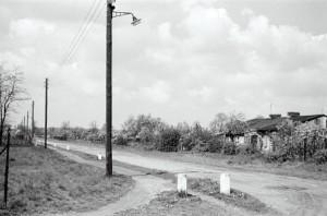 Die Obstallee 1967