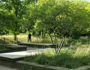 Park_Sicht1