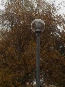 Neue-Beleuchtung-imPark1