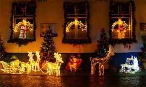 Weihnacht 2014_ in der Wilhelmsaue ts