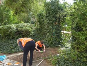 ... und drumherum, beim Putzen und Pflanzensetzen von Gewobag