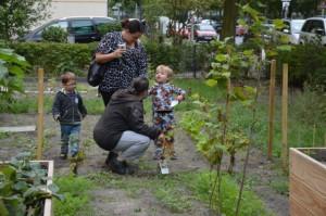 Ganz besonders knifflig - nicht nur für die Kleinen - die Pflanzen zu erkennen