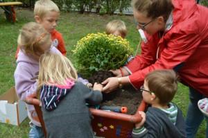 und mit Pflanzen zum Einbuddeln für die Kleinen